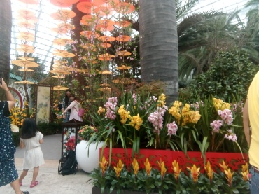 flower dome 15