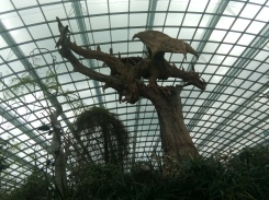 flower dome 19
